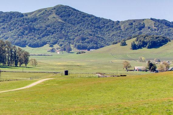 Spring Hill Ranch